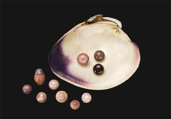 珍珠的颜值可以覆盖整个色谱 - 三星堆玉器图文 - 三星堆玉器图文