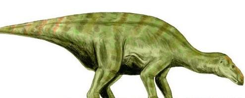 2.3亿年前的动物图片