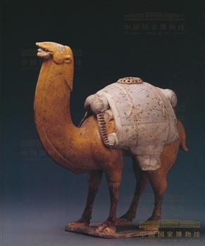 商人骆驼矢量图